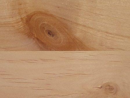 Jelšev les masivno